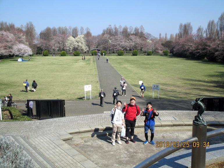 ⑫桜満開の快晴花見日和