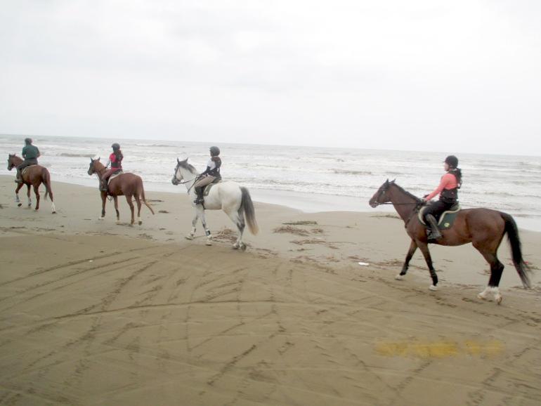 千里浜なぎさと馬(7月2日午後)